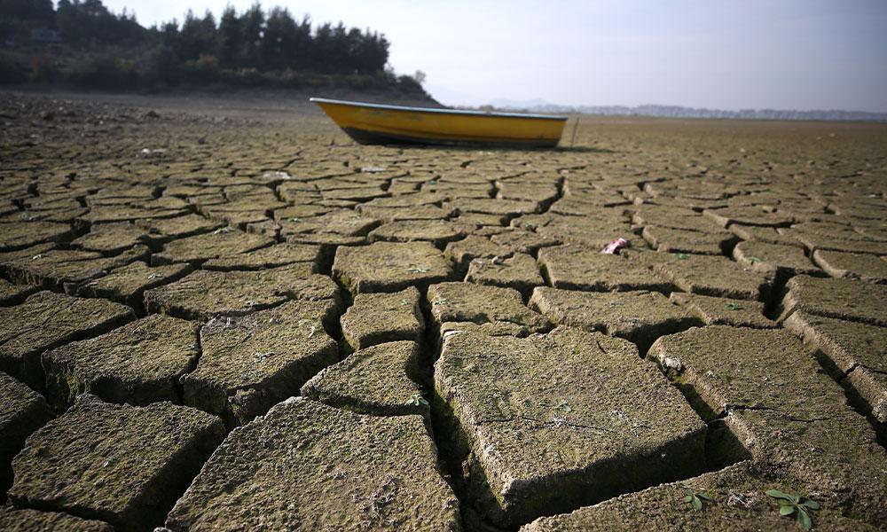Küresel ısınmanın bir etkisi daha ortaya çıktı