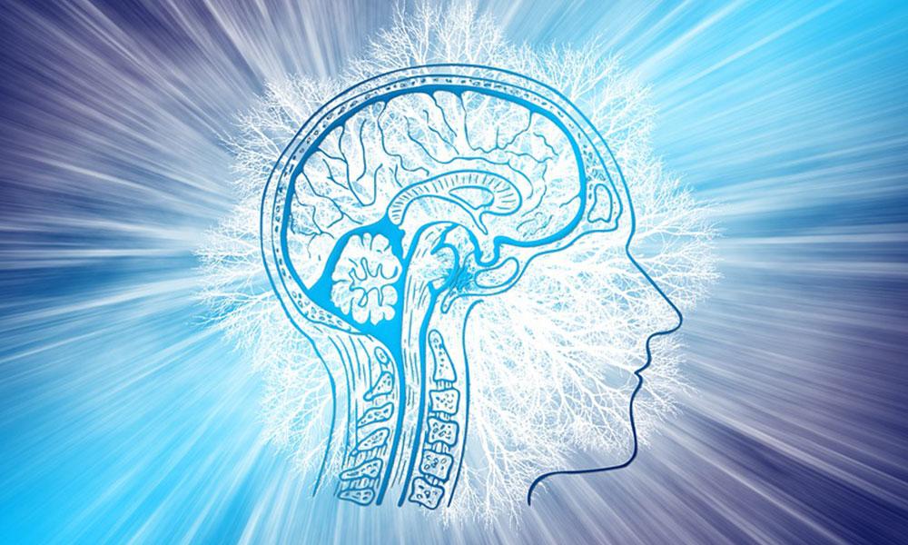 Kaybolan beyin hücreleri yerine geçebilen 'yapay nöronlar' Alzheimer'la mücadelede kullanılabilir