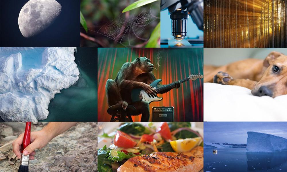 2019'un fark yaratan bilimsel buluşları