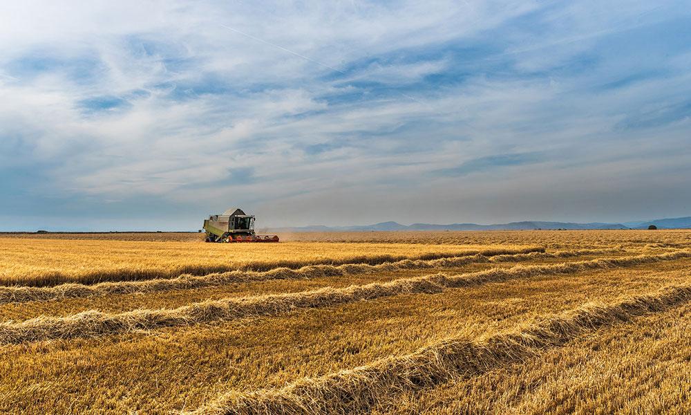 'AKP iktidarında çiftçinin borcu 50 kat arttı'