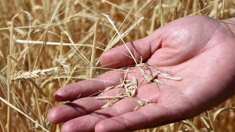 Çiftçi borç batağında: 4.8 milyarlık kredi takipte