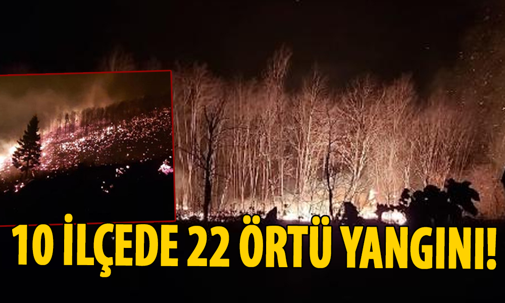 Trabzon'da orman yangını! Evler tahliye edildi