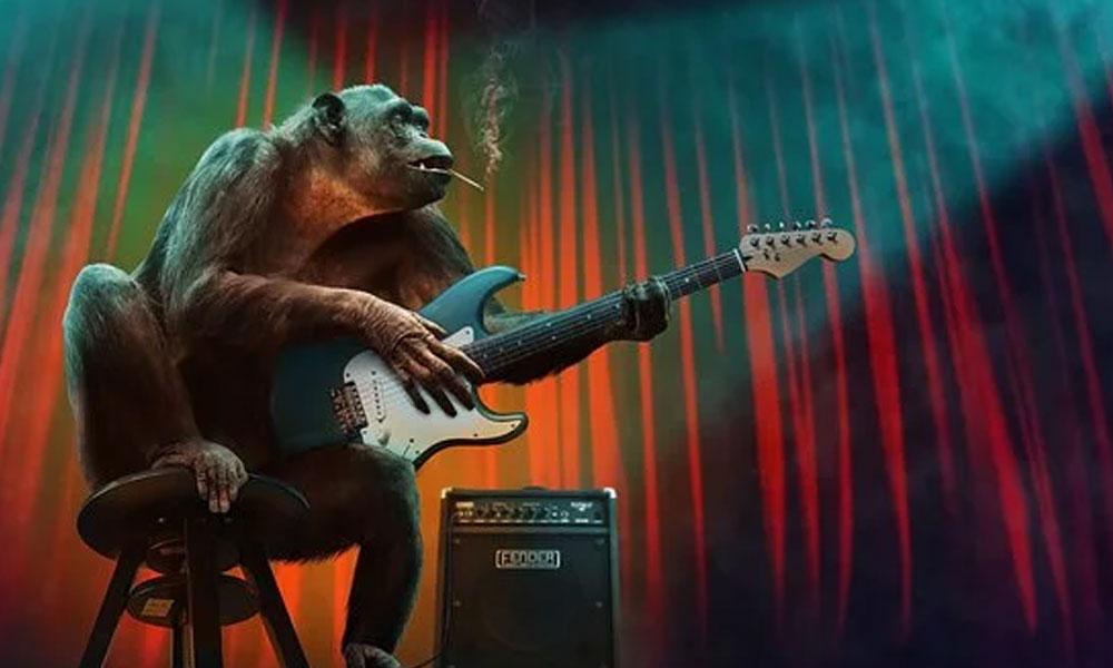 Şempanzelerin dans etmeyi sevdiği ortaya çıktı