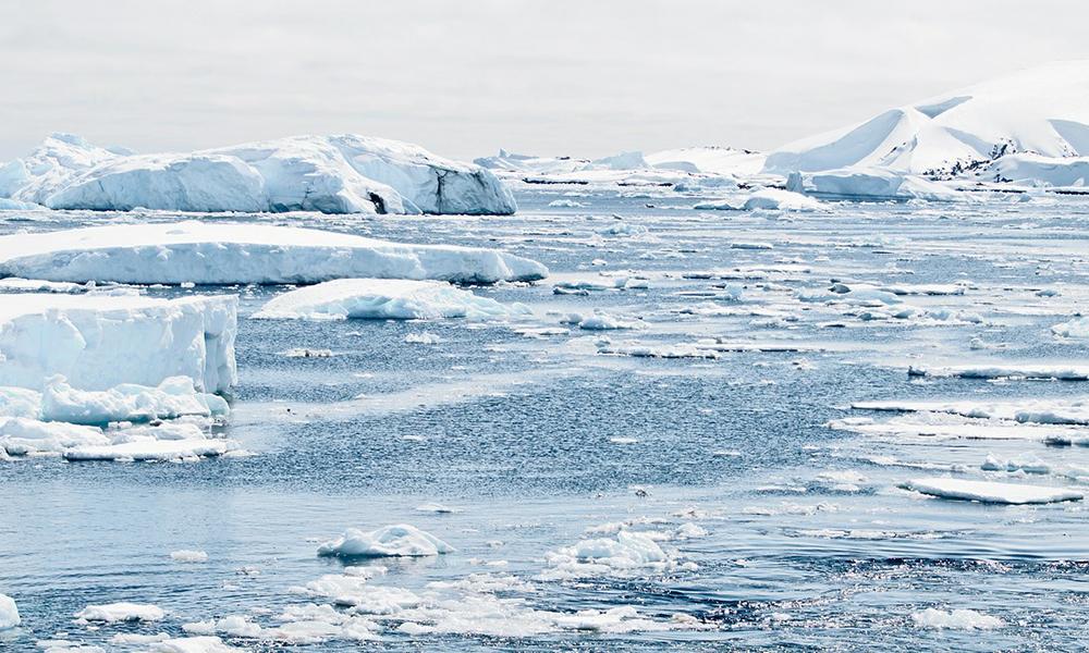 Antarktika'da alarma geçiren sıcaklık! İlk kez bu kadar yüksek