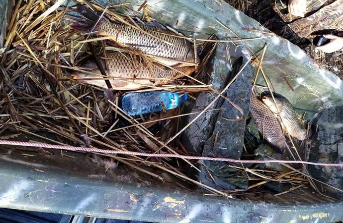 Elektroşokla balık avına 73 bin lira ceza
