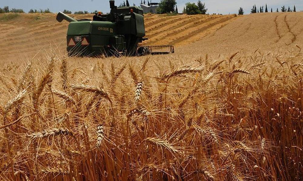 'Tarım ülkesi' Türkiye, Suriye'den 20 bin ton hububat ithal edecek