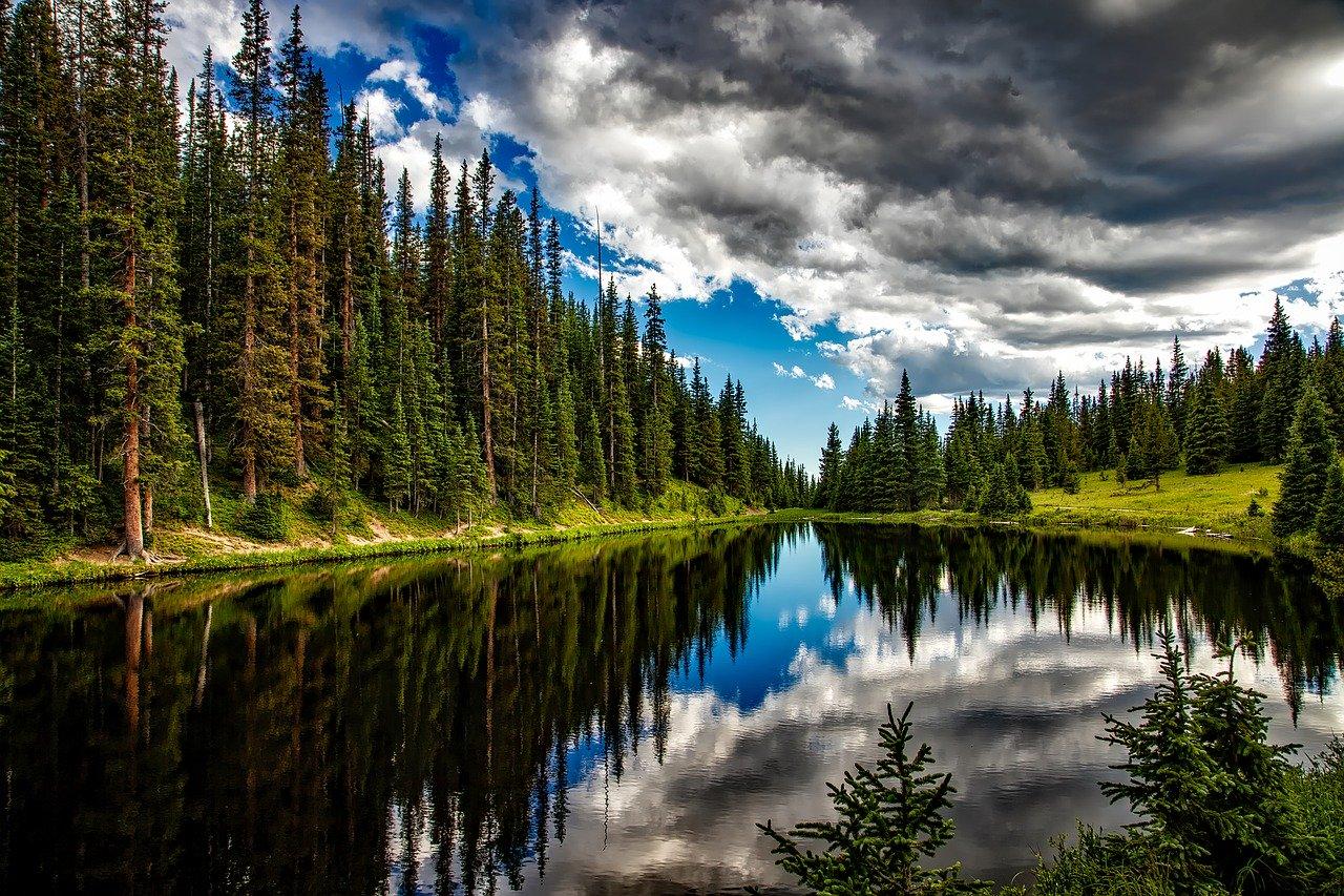 ABD'de kaybedilen yüzük 47 yıl sonra Finlandiya'da ormanda bulundu