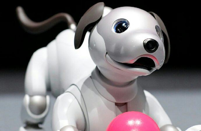 Robot evcil hayvanlar için yapay zeka dopingi!