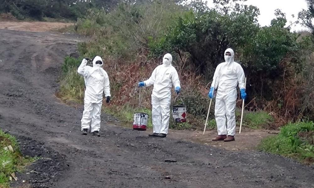 İBB'den koronavirüs mezarlığı açıklaması