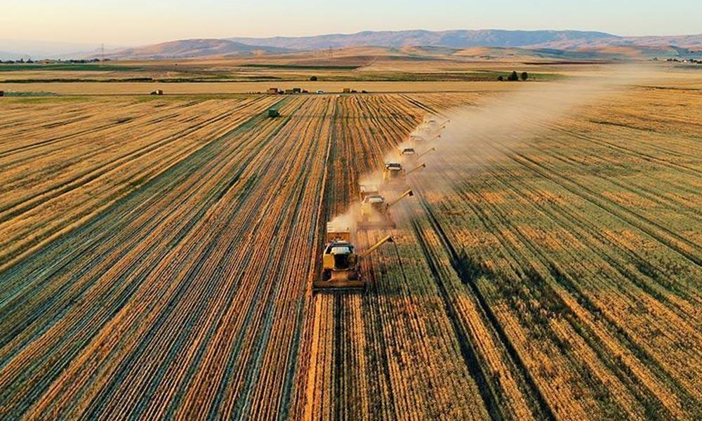 Tarım ve Orman Pakdemirli, tarımsal destek için üreticilere yapılacak ödeme miktarını açıkladı