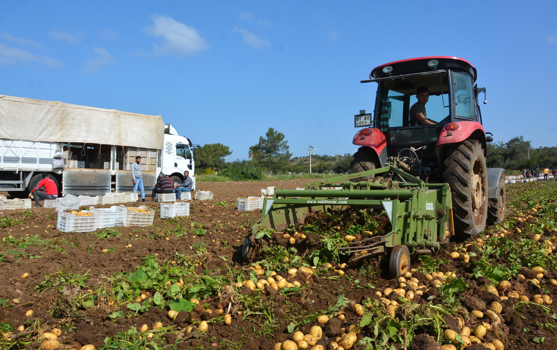 İşte koronavirüs sonrası tarım sektörünü canlandırmak için yapılması gerekenler
