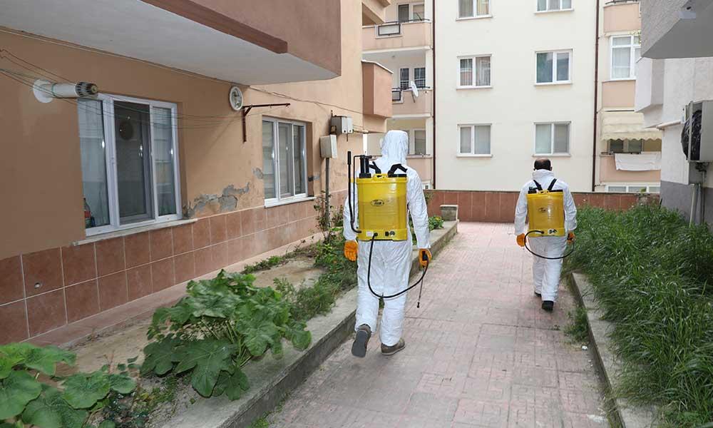 Mudanya'da 15 günde 5 bin bina ilaçlandı