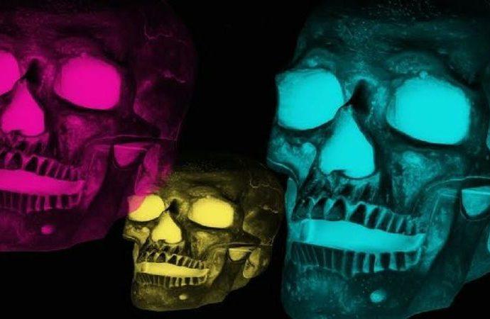 Dünyanın ilk dijital iskeleti olacağını bilmiyordu.
