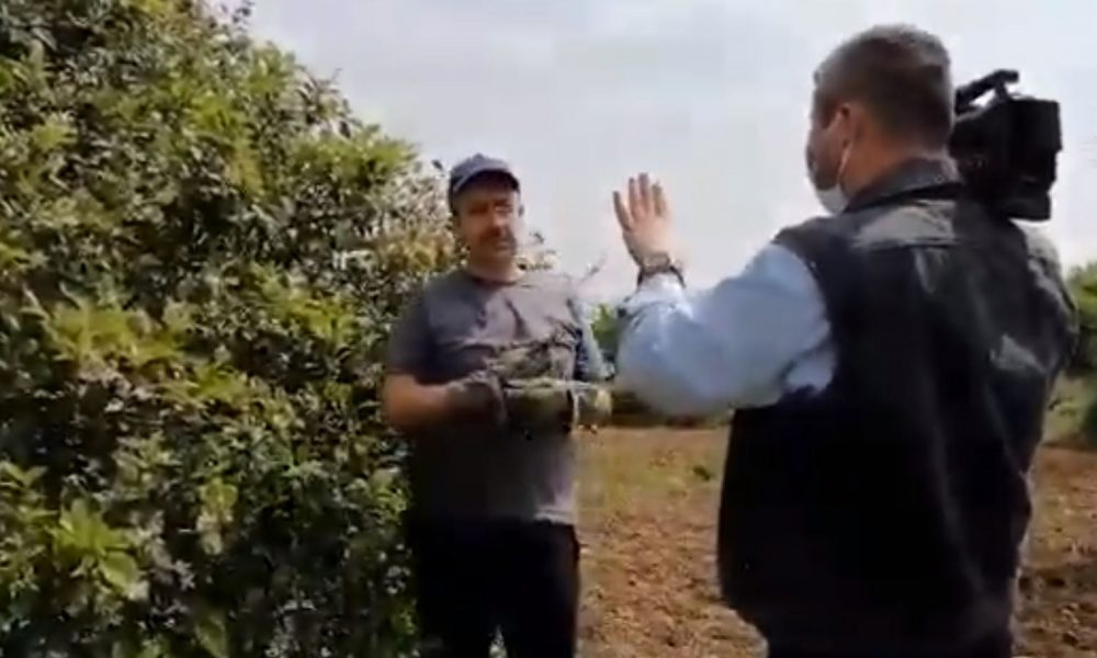 İmamoğlu'nun avukatından limon kumpasına suç duyurusu