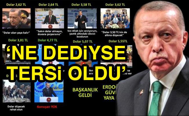 Erdoğan'ın 'dolar arşivi'ni açtı!