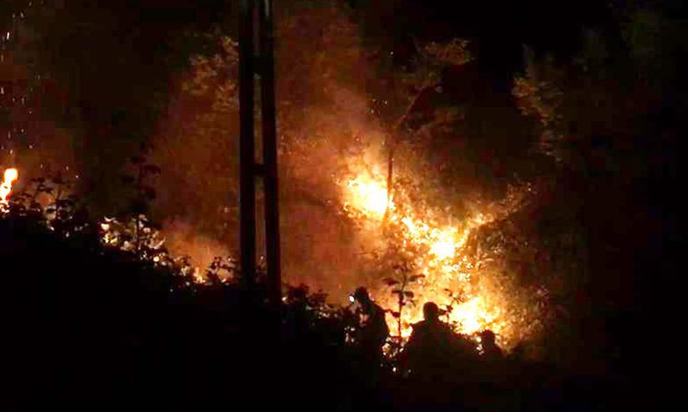 Rize'de orman yangını! 6 saat sonra söndürüldü