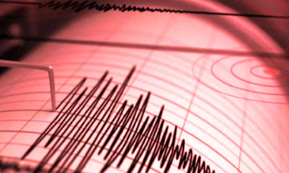 Japonya'da 5.6 büyüklüğünde deprem