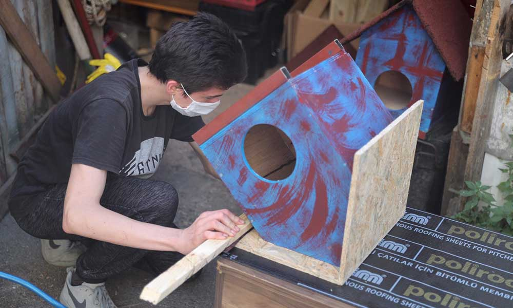 Genç Stajyer, sokak kedilerine ev tasarlıyor