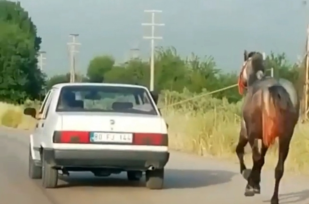 Atı otomobile bağlayıp metrelerce koşturdular
