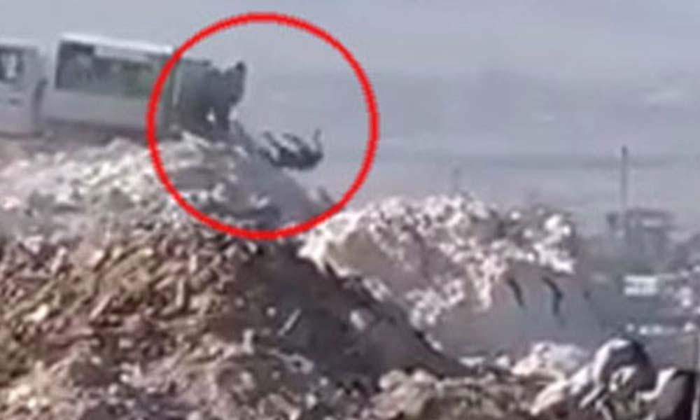 Denizli'de tepki toplayan görüntüler! Soruşturma başlatıldı
