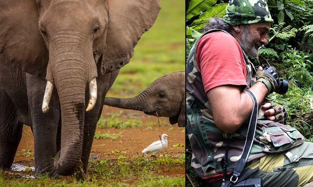 Fillerin sıra dışı iletişim yöntemi… İşte Süha Derbent'in vahşi yaşam fotoğrafları