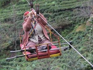 Çay hasadında 'ilkel teleferik' tehlikesi
