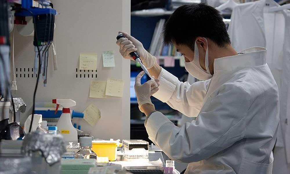 Bilim insanları kanseri neden tedavi edemediklerini açıkladı