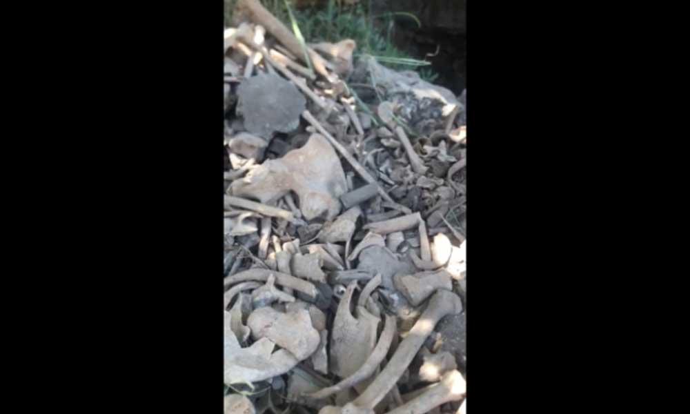 Faili meçhul cinayetlerle anılan Dargeçit'te toplu mezar ortaya çıktı