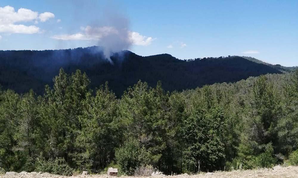 Antalya'da iki farklı noktada orman yangını
