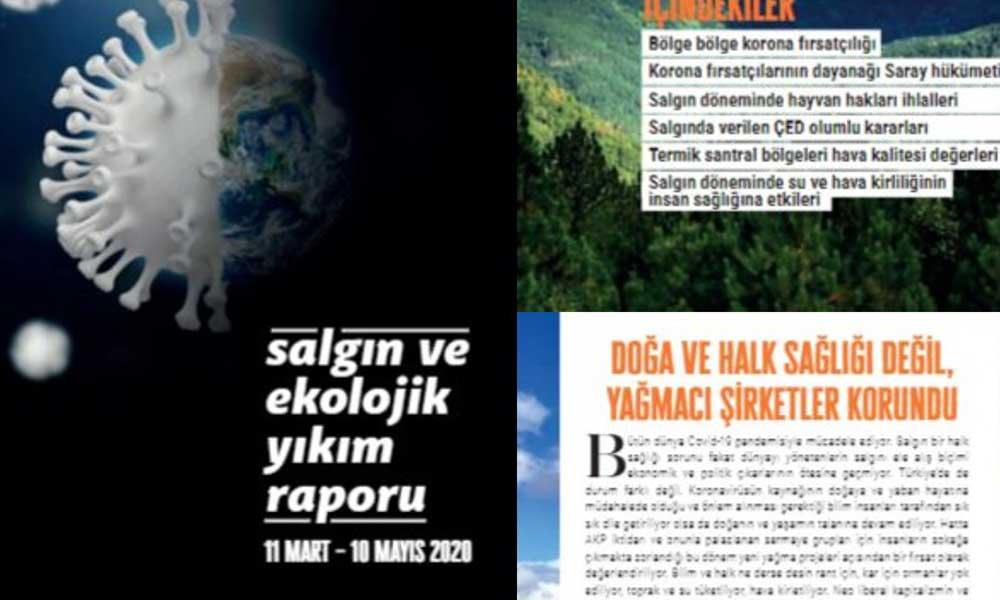'Salgın ve ekolojik yıkım raporu' açıklandı