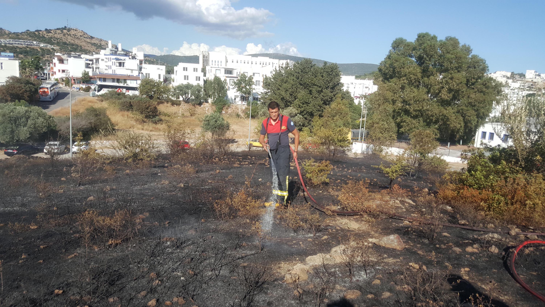 Bodrum'da, makilik alanda yangın