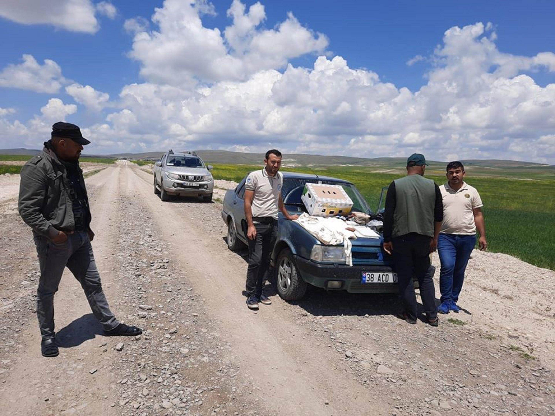 Sivas'ta, kaçak şahin avına 8 bin lira ceza