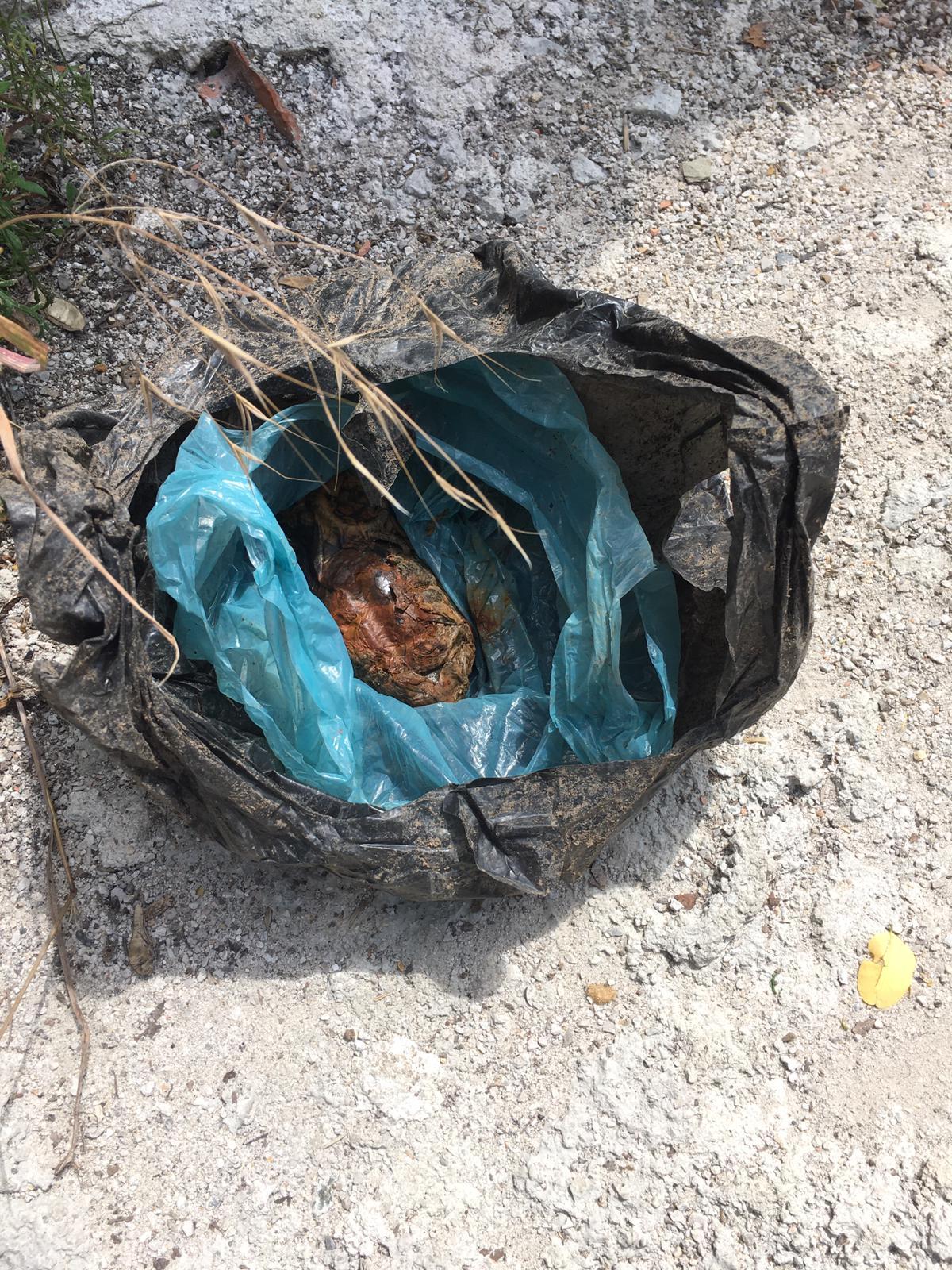 Fide dikmek istediği bahçesinde 'el bombası' buldu