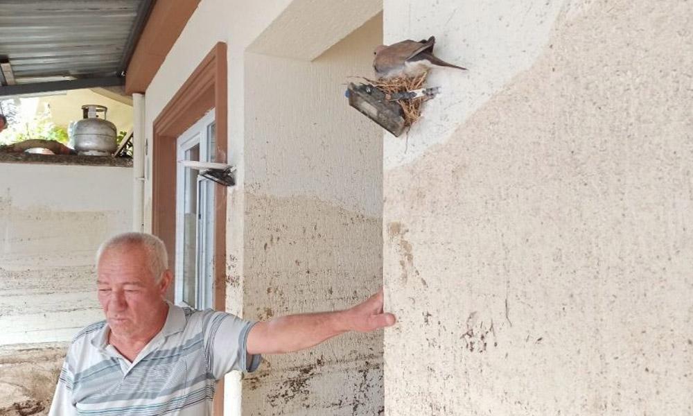 Mikdat Kadıoğlu açıkladı: Kuşlar bile su baskınını biliyordu