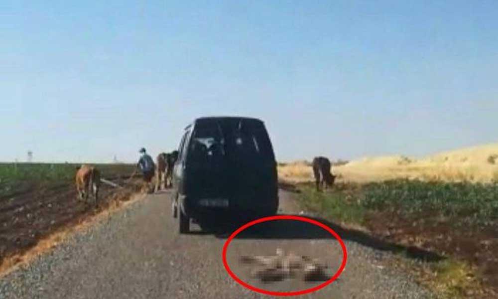 Diyarbakır Sur'da tepki çeken görüntü: Kilometrelerce böyle sürükledi!
