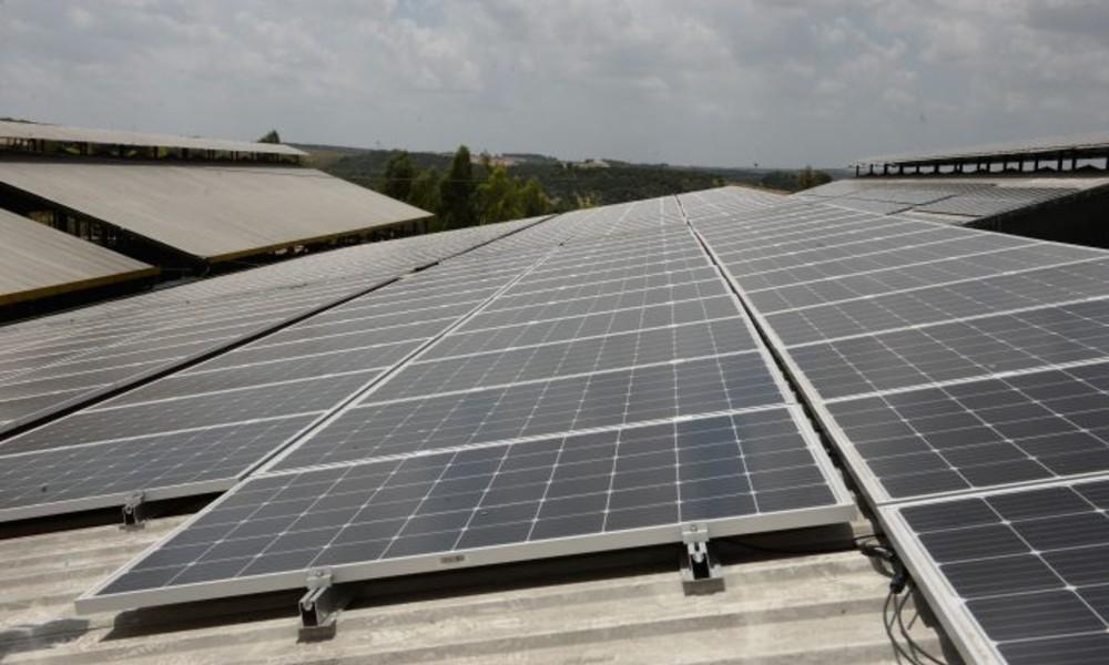 Koronavirüs salgını güneş paneli sistemlerine ilgiyi artırdı