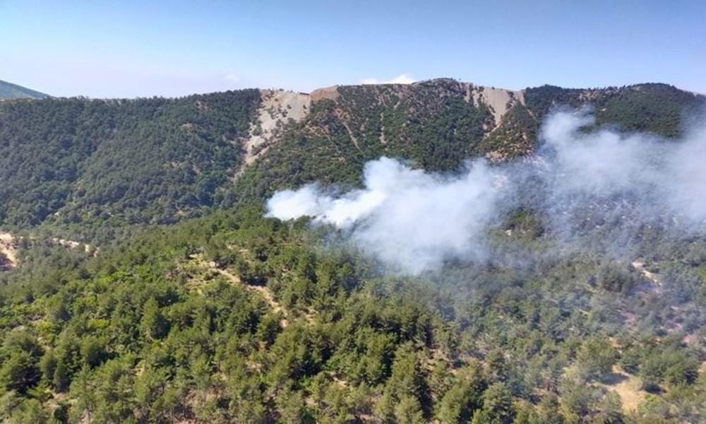 Hatay'da orman yangını: 3 hektar alan kül oldu