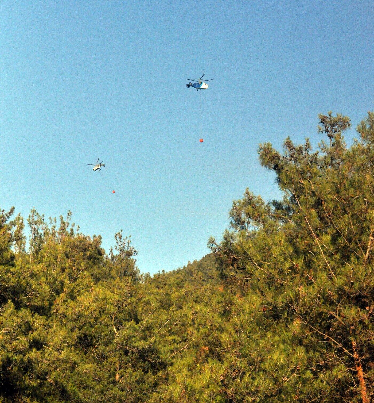 Manisa'nın Ahmetli ilçesin'nde orman yangını