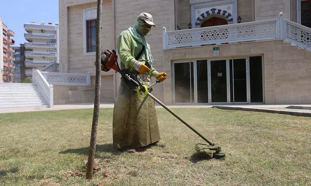 Efeler'in yeşil ekipleri çalışmalarına devam ediyor