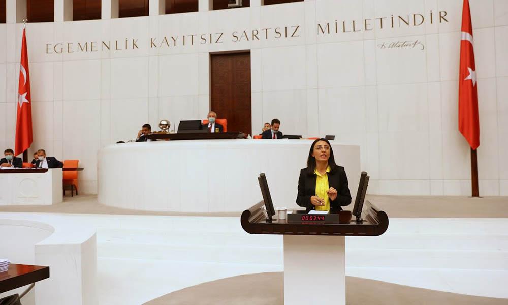 CHP Bursa Milletvekili Kayışoğlu Yenidoğan'daki doğal gaz sorununu Meclis'e taşıdı
