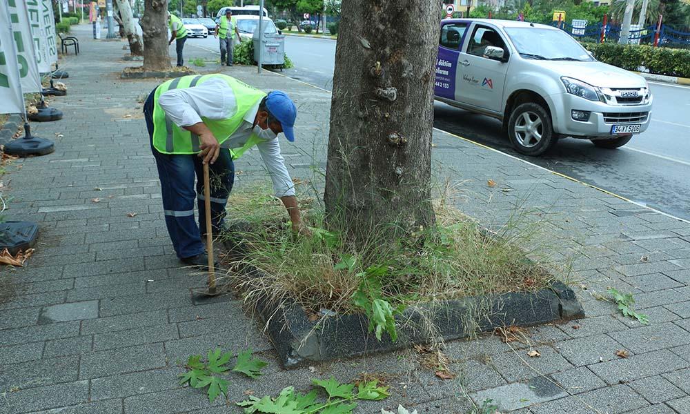 Büyükşehir, park ve bahçeler ekiplerini güçlendiriyor