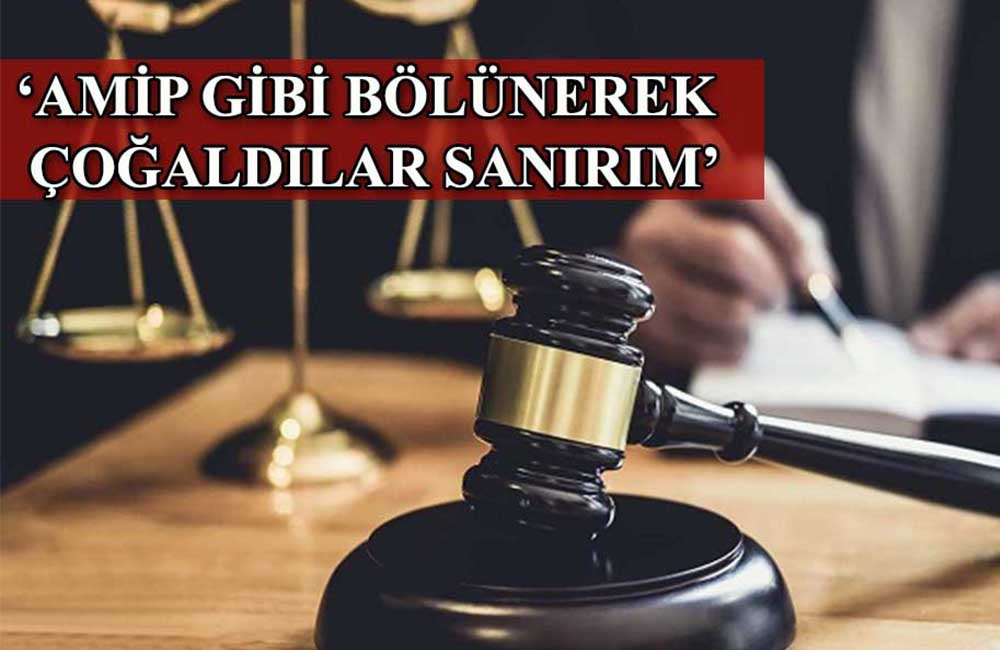 Yandaş yazar, yargıda FETÖ'den sonra yapılanan tarikatı anlattı: Gücünü 30 kat arttırdı