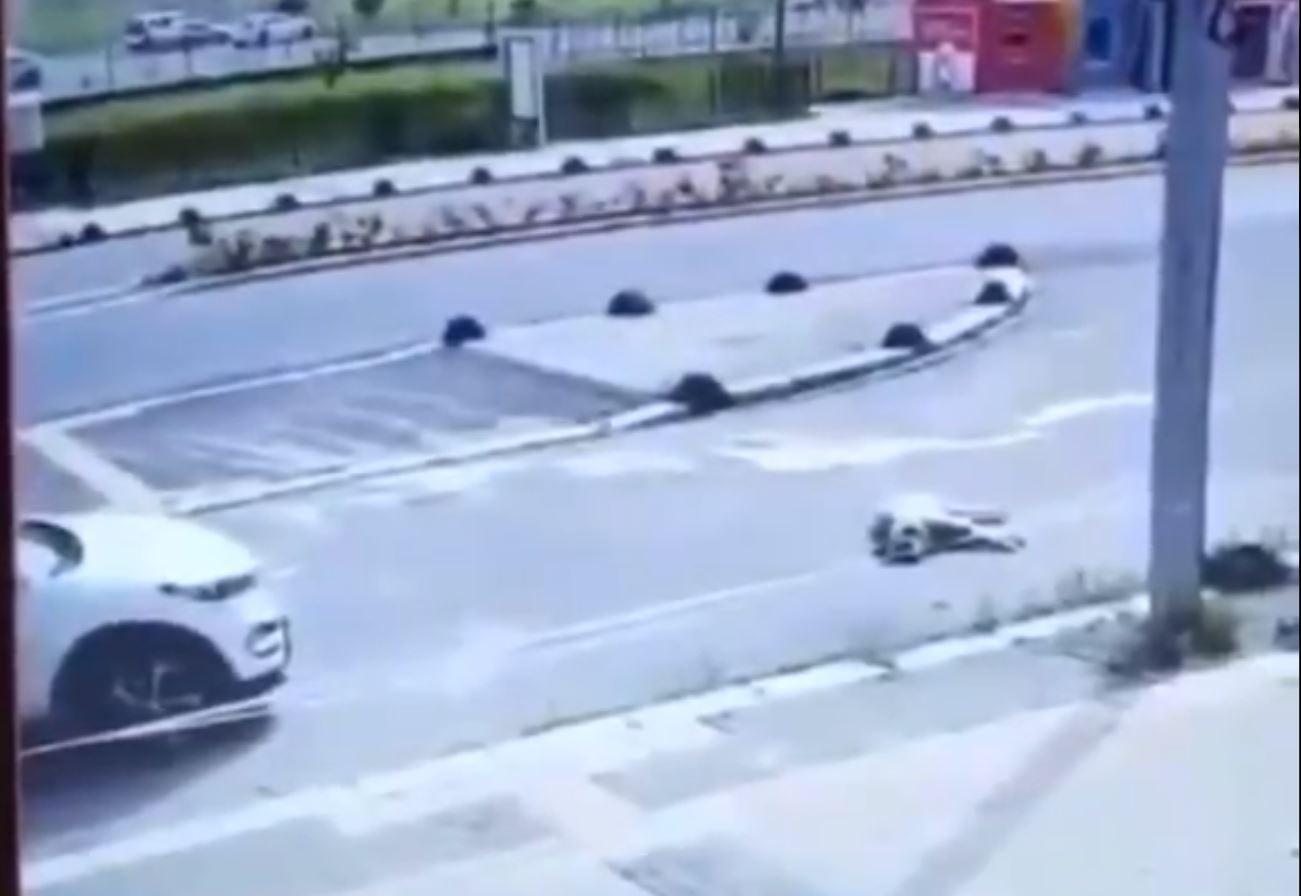 Yürekleri sızlatan anlar kamerada! Aracıyla uyuyan köpeğin üzerinden geçti, yoluna devam etti!