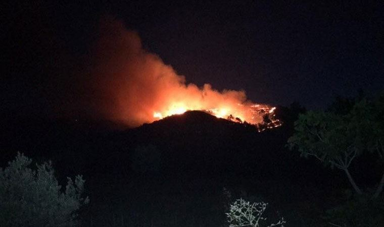 İzmir'de orman yangını!