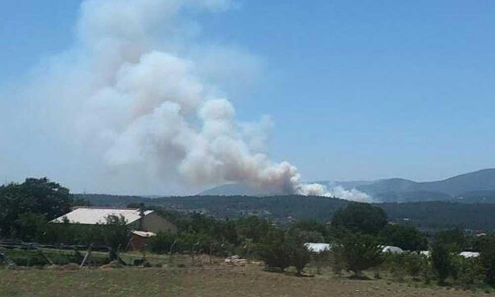 Urla'da yangın