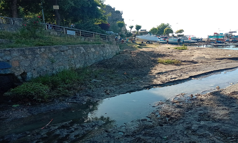 Halkın sağlığı tehdit altında! Amasra Küçük limana kanalizasyon mu akıyor?