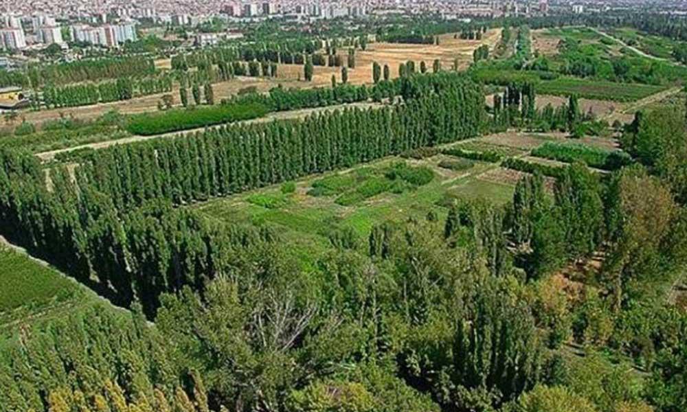 Ayasofya kararına dayanarak Atatürk Orman Çiftliği için harekete geçildi