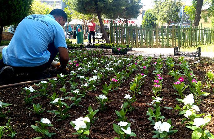 Seyhan'daki parklar temiz ve rengarenk
