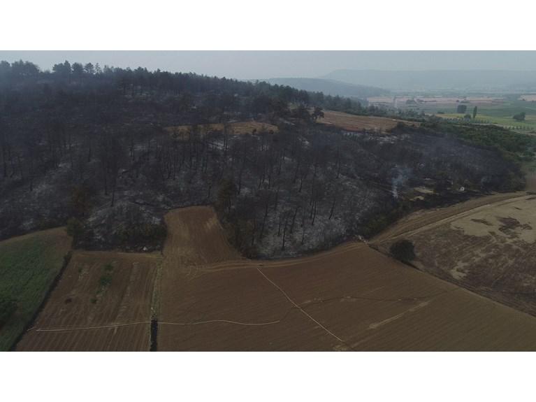 Çanakkale'de yangının boyutu gün ağarınca ortaya çıktı