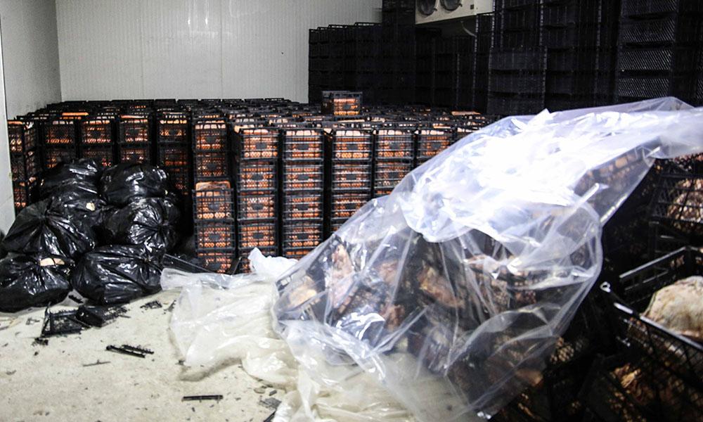 Yaklaşık 40 ton kaçak et ele geçirildi